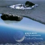 Steve Smith and the Tylas Cyndrome -  Pools of diversity (MP3)
